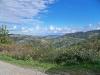 Verso l\'Alpe di Monghidoro