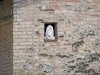 San Gimignano, casa privata, particolare