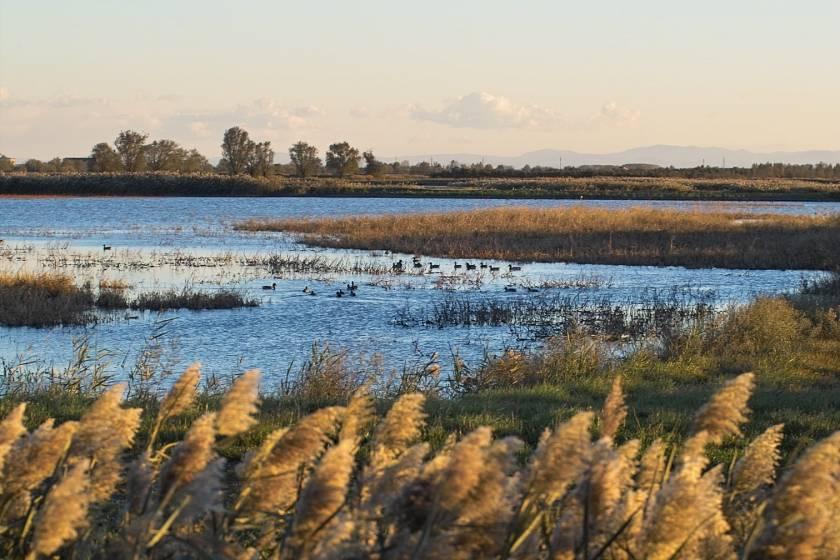 Ciclovia del Sole: paesaggio fiume Secchia