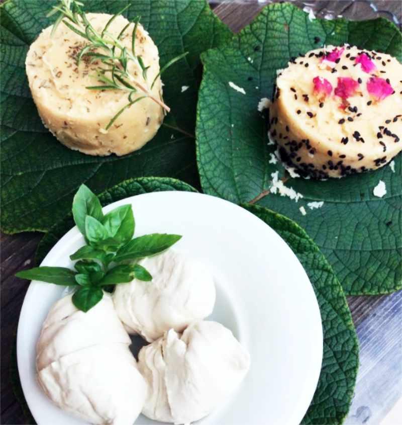 formaggi vegetali autoprodotti da Titti per la colazione salata alla Casota Vegan