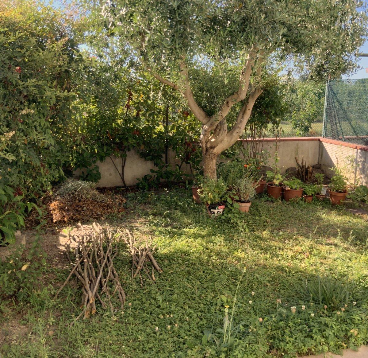 orto giardino le prime preparazioni